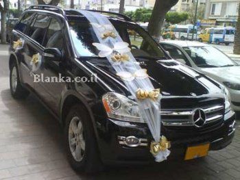 wedding car with gold butterfly