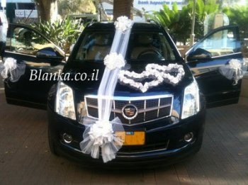 wedding car white ribbon