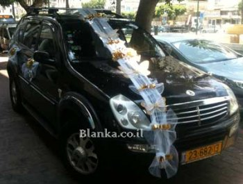 wedding car with butterfly