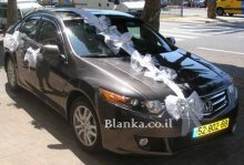 wedding car silver buttefly