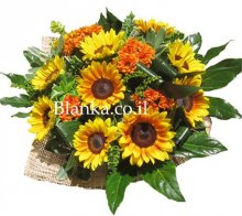 SunFlowers with Chrysanthemums Blanka-1