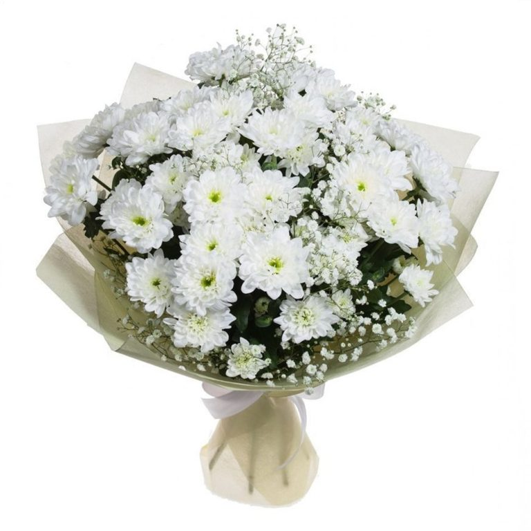 Большой букет из белых хризантем и роз фото, плюшевых медведей купить